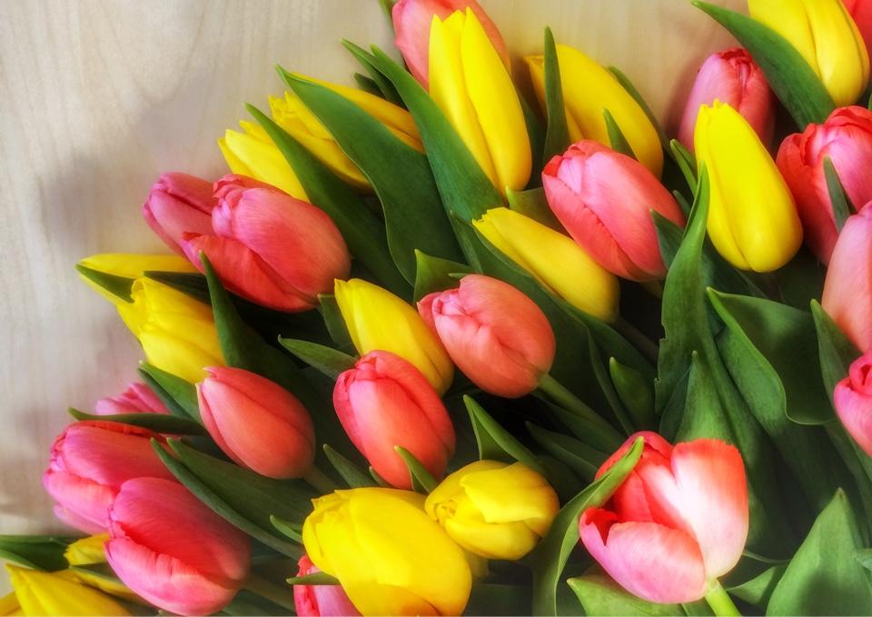 image-04-03-16-12-15
